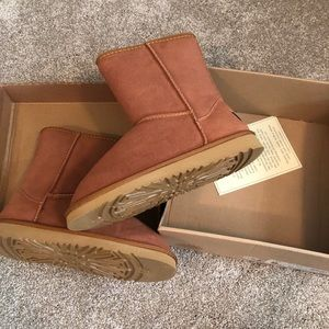 Brand new with box uggs